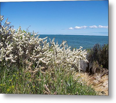 Metal Print featuring the photograph Brewster Beach by Robin Regan