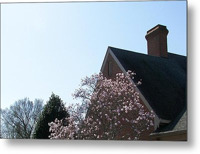 Metal Print featuring the photograph Brick And Blossom by Pamela Hyde Wilson