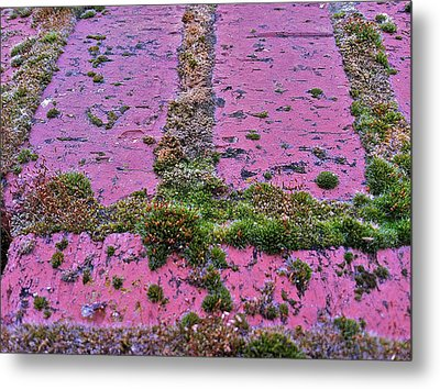 Metal Print featuring the photograph Brick Wall by Bill Owen