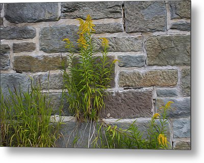 Brick Wall Flowers Metal Print