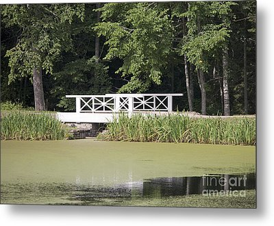 Bridge Over An Algae Covered Pond Metal Print by Jaak Nilson