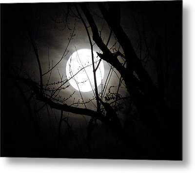 Bright Night Metal Print by Gloria Warren
