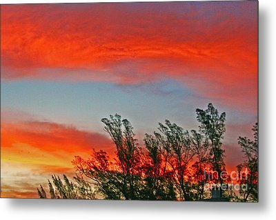 Brilliant Sunrise Metal Print