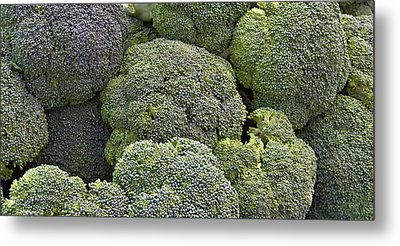 Broccoli Metal Print by Forest Alan Lee