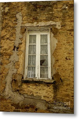 Broken Window Metal Print by Lainie Wrightson