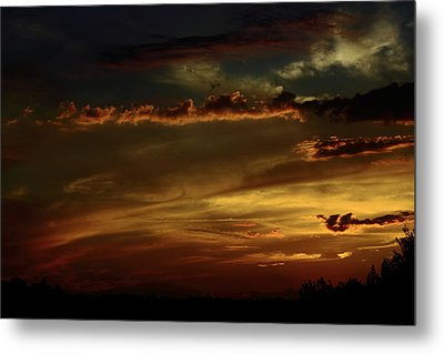 Brush Strokes Metal Print by Tanya Chesnell