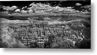Bryce Canyon - Black And White Metal Print by Larry Carr
