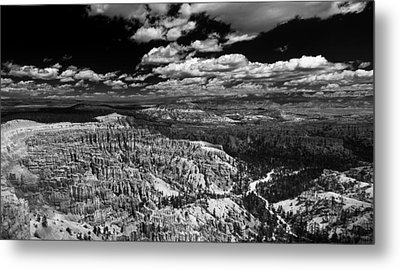 Bryce Canyon Ampitheater - Black And White Metal Print