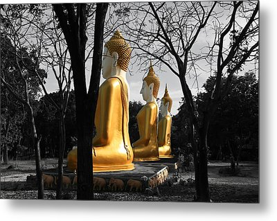 Buddha In The Jungle Metal Print by Adrian Evans