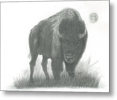 Buffalo   Metal Print by EJ John Baldwin