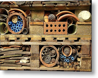 Bug Home Metal Print by Lee Rees