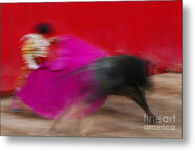 Metal Print featuring the photograph Bull Fighter - Mexico by Craig Lovell