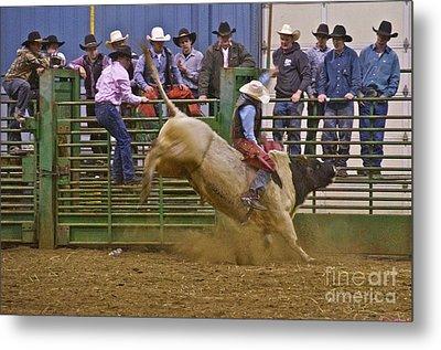 Bull Rider 2 Metal Print by Sean Griffin