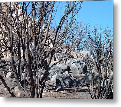 Burned Forest 4 Metal Print by Naxart Studio
