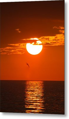 Burning Sunset Metal Print by Andres Leon