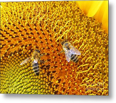 Busy Bees Metal Print by AmaS Art