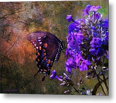 Busy Spicebush Butterfly Metal Print by J Larry Walker