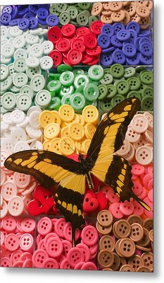 Butterfly And Buttons Metal Print by Garry Gay