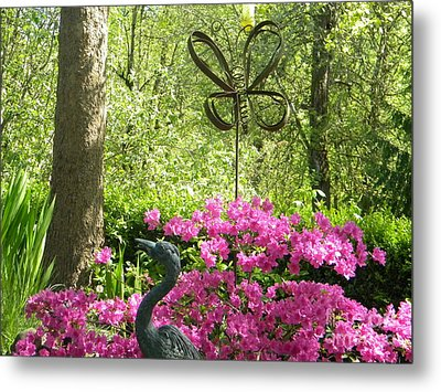 Butterfly By Pinks Metal Print by Kimberlee Weisker