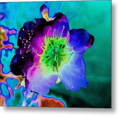 Butterfly Flower Metal Print