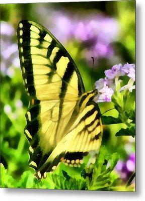 Butterfly Metal Print by Lynne Jenkins