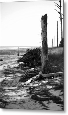 Bwhurricane Damage Metal Print by Judy Hall-Folde