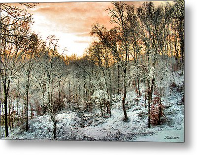 By Dawn's Early Light Metal Print by Kristin Elmquist