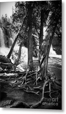 By The Falls Metal Print by Perry Webster