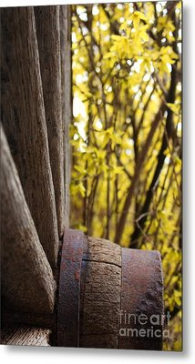 Metal Print featuring the photograph By The Rock Wall 2 by Laurinda Bowling