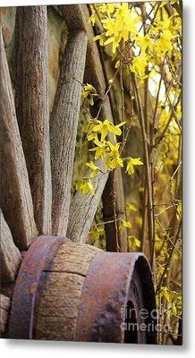 By The Rock Wall 3 Metal Print by Laurinda Bowling