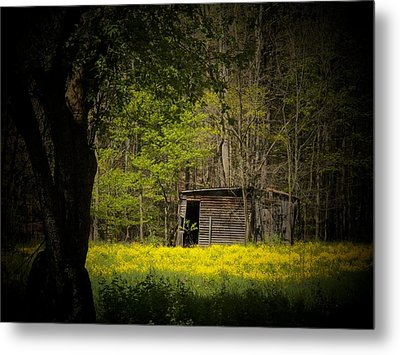 Cabin In The Flowers Metal Print by Joyce Kimble Smith
