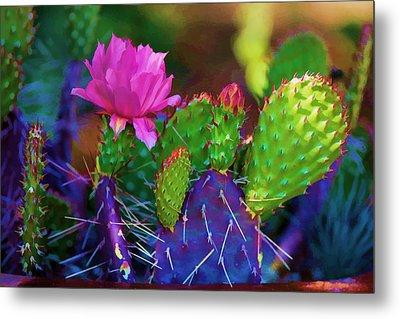 Cactus Flowers In Pink Metal Print