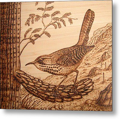 Cactus Wren Metal Print by Susan Rice