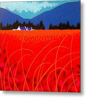 Cadmium Landscape Metal Print by John  Nolan