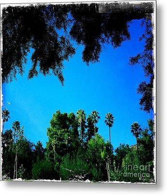 California Dreaming Metal Print by Nina Prommer