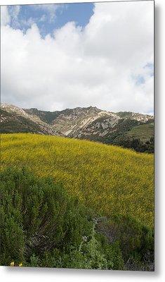 California Hillside View V Metal Print
