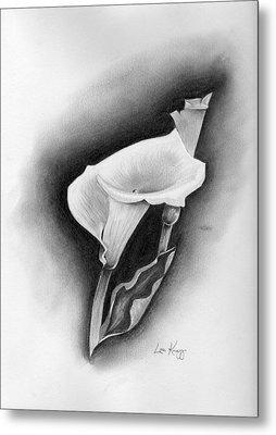 Calla Lily Metal Print by Lou Knapp