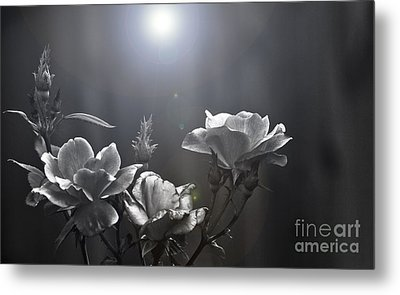 Called Upon Metal Print by Kim Henderson
