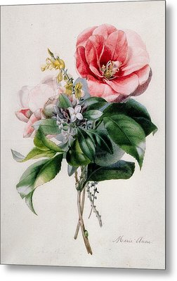 Camellia And Broom Metal Print by Marie-Anne