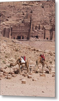 Camels In Front Of The Royal Tombs Petra Metal Print by Martin Child