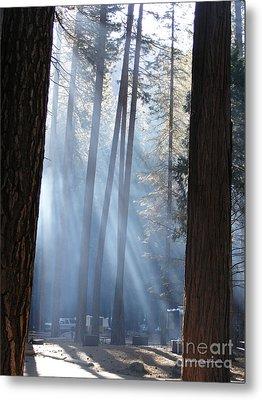 Campfire Smoke Through The Trees Metal Print