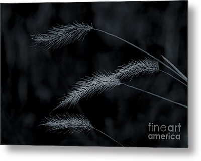 Can't Be Broken Metal Print by Kim Henderson
