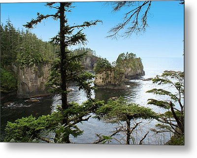 Cape Flattery Metal Print by Christy Leigh