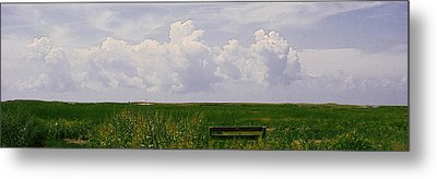 Metal Print featuring the photograph Cape Marsh by Michael Friedman