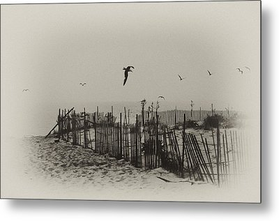 Cape May Morning Metal Print by Bill Cannon