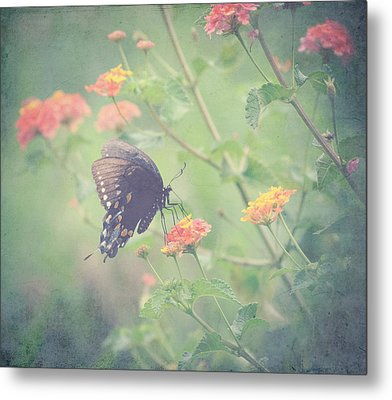 Captivating I Metal Print