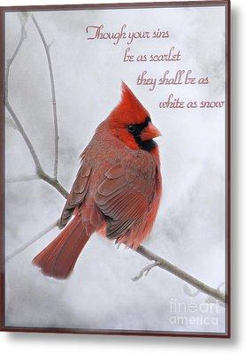 Cardinal In The Snow - D001540 Metal Print by Tandem Designs