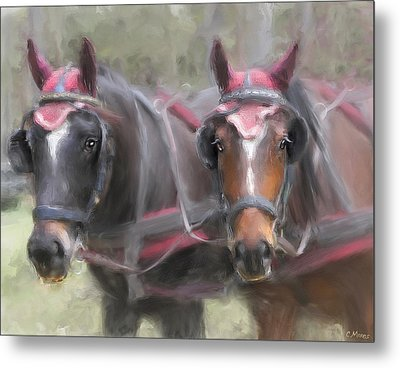 Carriage Horses Pleasure Pair Metal Print by Connie Moses