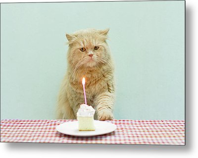 Cat About To Bllow A Candle Metal Print by Nga Nguyen