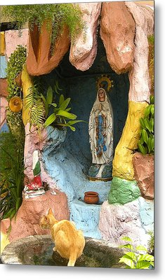 Metal Print featuring the photograph Cat At The Grotto by Victoria Lakes